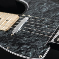 WD® Custom Pickguards